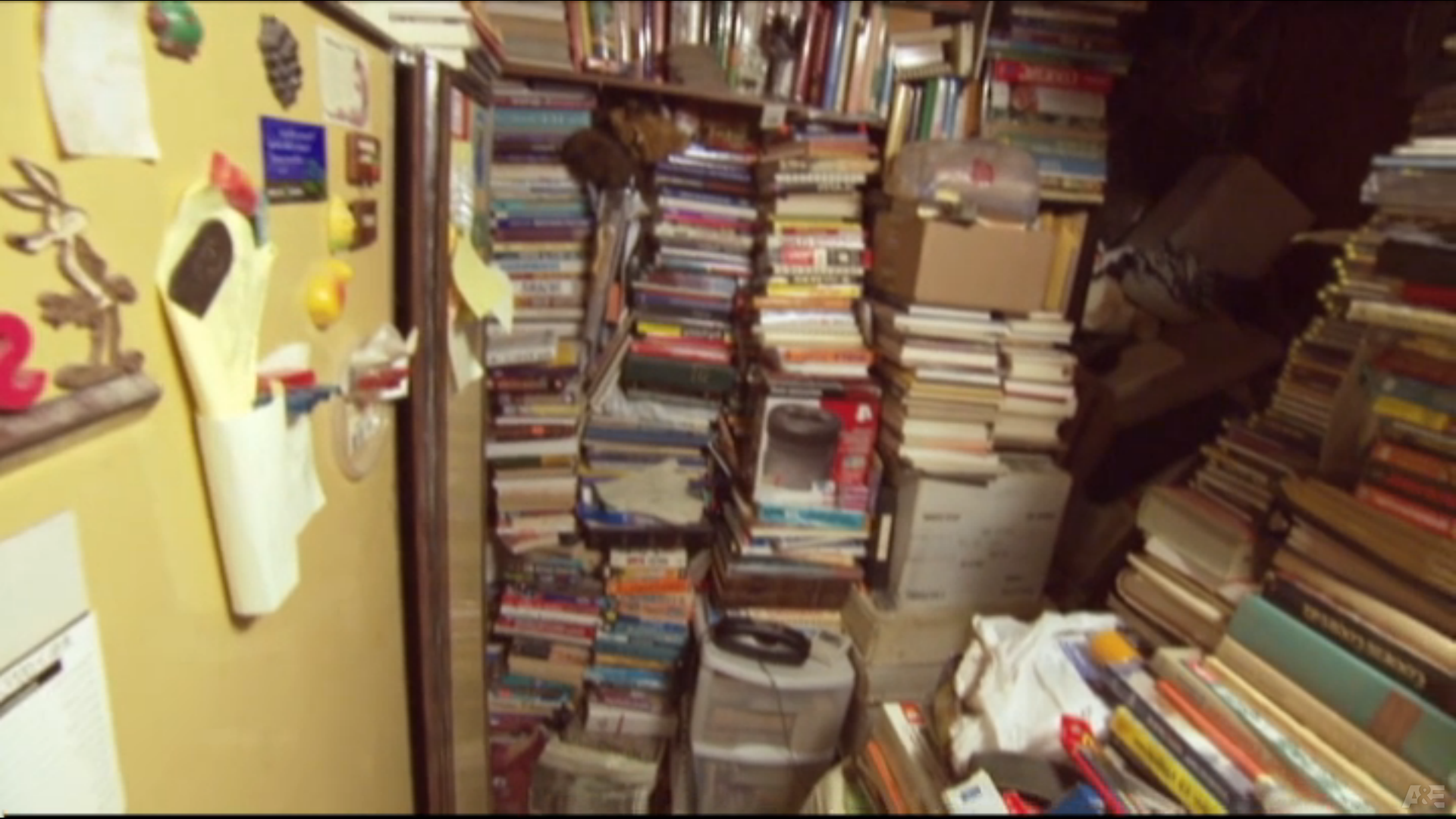 Book hoarding: The down side