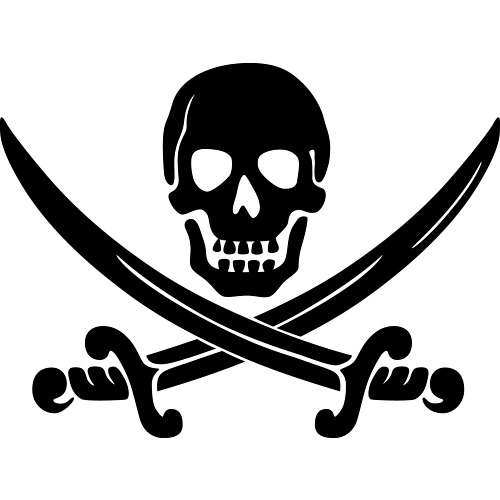 Senior Pirate Party politician won't let you pirate her book