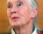 Jane Goodall addresses accusations of plagiarism
