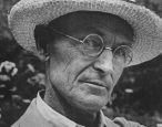 We miss you, Herman Hesse