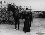 The Book Women: Librarians who delivered books on horseback