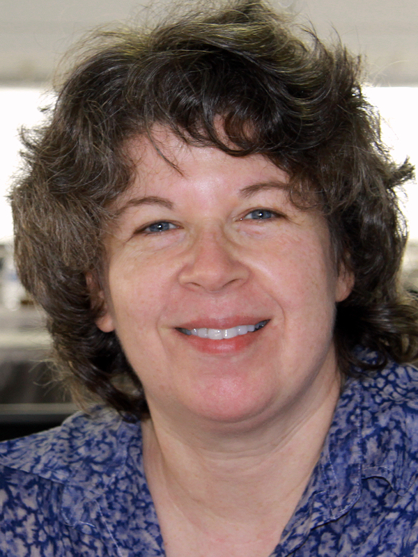 Meg Wolitzer on feminism and writing