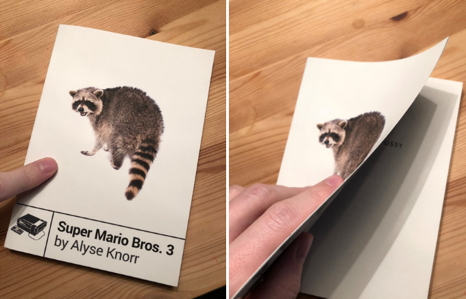 A misprinted poetry book gives Super Mario Bros. 3 fans an unexpected title