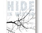 Ways to Hide in Winter has a special ebook deal going on