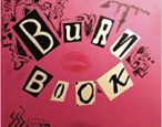 "The ""Burn Book"" authored by Virginia Woolf instead of Regina George"
