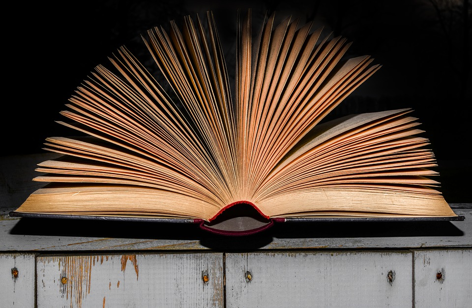 Why are we obsessed with reading books more quickly?