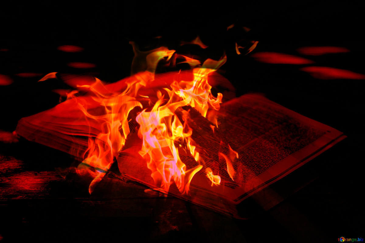 A Chinese library burns books and sparks outrage