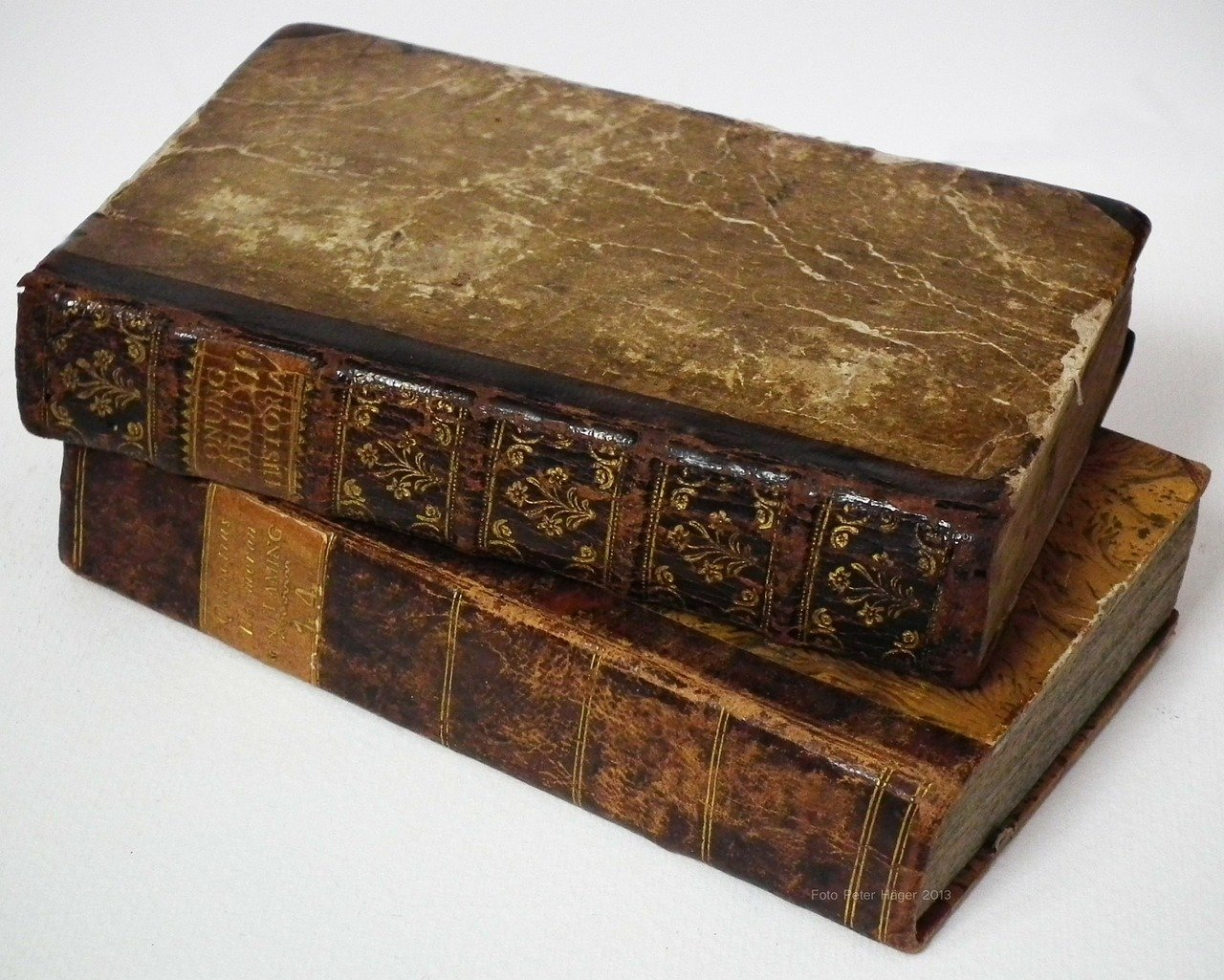 Huge collection of rare books left to Devon charity shop